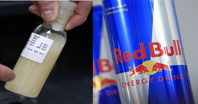 Fake RedBull - semem e urina de touro